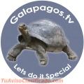 Galápagos Playero