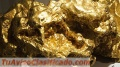 Sell gold mine in Colombia, Vendo mina de oro en Colombia