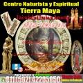 Brujo Tomas Ikal  whatsapp +502 42205050 ayuda con los Maestros de Samayac