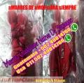 Ayuda para recuperar lo perdido con la virgen de Guadalupe 011 502 49814766 Whatsapp