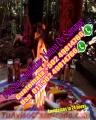 Tarotista y vidente, Esoterica conocida como la señora de los amarres maestra Guadalupe