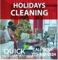 Professional Deep-Clean Maid Service