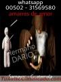 SOY BRUJO VIDENTE  Y PODEROSO DE SAMAYAC 011502-31569580