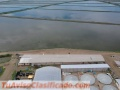 I an looking for an shrimp farming