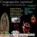 Congregacion espiritual Milagros de Guadalupe especialistas en curaciones de enfermedades