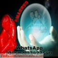HECHIZOS  PARA ENAMORAR Y DOMINAR   (011502)  33427540