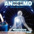 ANSELMO,GUIA ESPIRITUAL DEL AMOR (011502)33427540