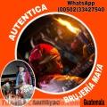BRUJO MAYA ANSELMO,LA VERDADERA SOLUCION A TUS PROBLEMAS (011502)33427540