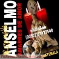 Brujo anselmo...trabajos de amor rapidos y efectivos (011502) 33427540