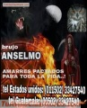 AMARRES NEGRO, BRUJO ANSELMO (011502)33427540