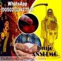 BRUJO  PACTADO ANSELMO, CEREMONIAS DE PANTEON   (011502)  33427540
