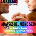 AMARRES PARA PERSONAS DEL MISMO GENERO  (011502)  33427540